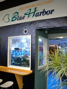 BlueHarborの玄関には水槽。トイレにも水槽が