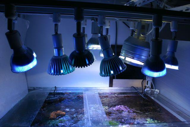 LEDを中心とした水槽の照明